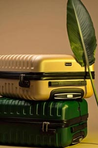 Маленькие чемоданы Wittchen