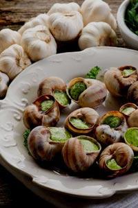 Эскарго - изысканный деликатес из виноградных улиток