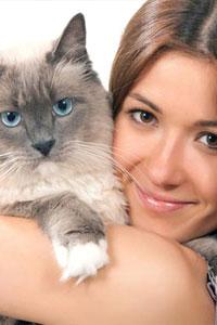 Кошка: как грамотно ее кормить и содержать?