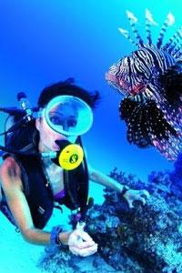 Дайвинг: чем полезны подводные погружения