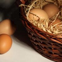 Так что же было раньше: яйцо или.. холестерин