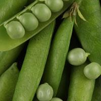 Зеленый горошек: немного калорий и много витаминов