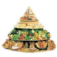 Пирамида питания ВОЗ: