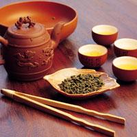 Чайная культура для