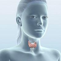 Болезни щитовидной железы у подростков: важно вовремя отреагировать