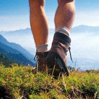 Как укрепить организм и сбросить вес с помощью пеших прогулок