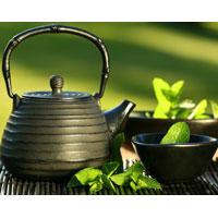 Употребление зеленого чая защищает от слабоумия и рака