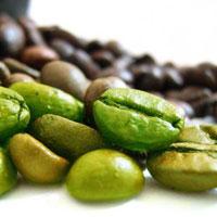 Зеленый кофе – эффективный способ сбросить вес