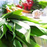 Первые весенние витамины: черемша. Рецепт соуса песто и салатной заправки