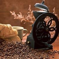 Кофе: пить нельзя отказываться?