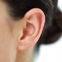 Аурикулодиагностика и массаж ушей: о чем расскажут раковины