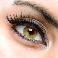 Сохранить хорошее зрение: что делать если организму не хватает витамина С