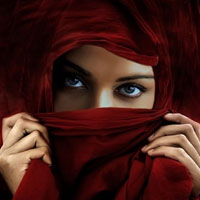 Пособие для мусульманских мужчин о том, как… бить жену