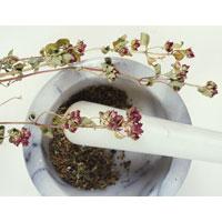 Очищение организма от шлаков растительными средствами