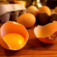 Яйцо на завтрак препятствует ожирению