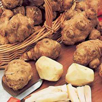 Топинамбур - весенний овощ для стола и косметички