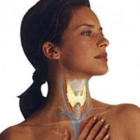 Ефективний засіб для відновлення роботи щитовидної залози