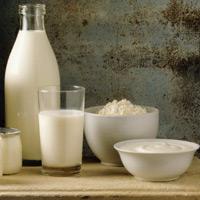 Кто живёт в кисломолочных продуктах?