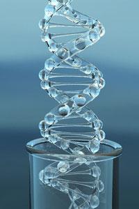 Генетическая революция
