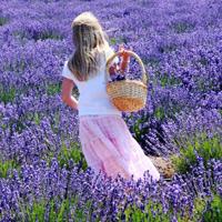 30 полезных советов: как вернуть своей жизни былую простоту и легкость