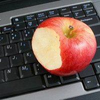 Здоровый и полноценный перекус на работе: какой он?