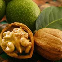 Грецкие орехи - еда богов
