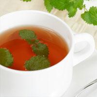 Собираем дикие травы для зимнего чаепития