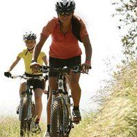 Горный велосипед для активного отдыха: подробности