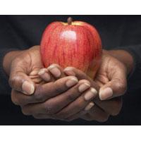 Секрет долголетия в... яблоках