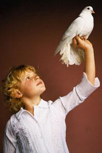 Большая Белая Птица