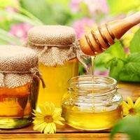 Мёд может полностью заменить сиропы от кашля