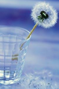 Важно не сколько вы пьете воды, а сколько выводите