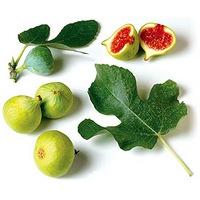 2 інгредієнти для позбавлення від зайвих кілограмів