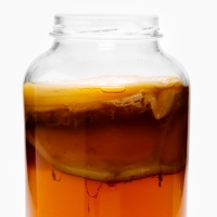 Чайный гриб для похудения: приготовление и противопоказания