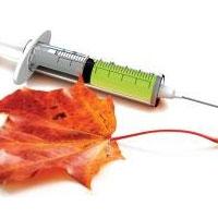 Грипп: прогнозы на осень-зиму 2012-2013. Вакцинация от гриппа