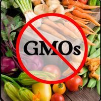 Где искать ГМО и на сколько это вредно