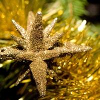 Как испортить себе и окружающим новогодние праздники