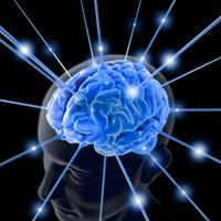 Сканирование мозга способно определить силу чувств