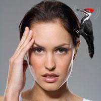 Почему у женщин часто болит голова?