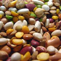 Бобовые: питательная ценность и полезные блюда