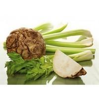 Сельдерей - средство для похудения и укрепления здоровья