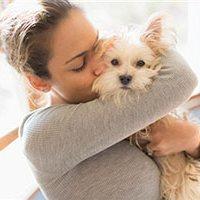 Владельцы собак более здоровы, чем средний человек