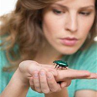 Почему возникает инксектофобия и как с ней справиться?