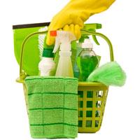 Чем опасны моющие средства в нашем доме