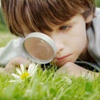 Существуют ли стандарты для развития ребёнка?