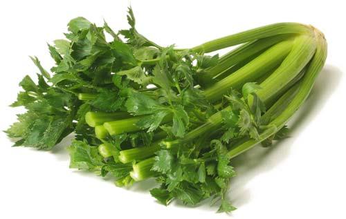 В чём польза привычной свежей зелени?