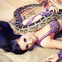 Змеи во сне: что они значат?