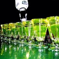 Напитки и продукты, которые справятся с похмельем