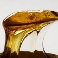 Народная медицина и продукты пчеловодства: цветочная пыльца и пчелиный яд