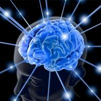 Канадские ученые доказали, что нездоровые мысли мешают мозгу продуктивно работать